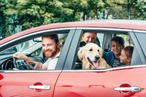 rodina a pes v autě